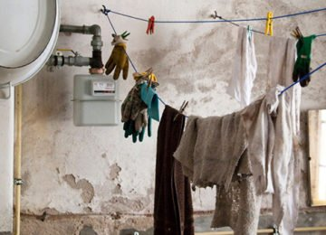 Mold is not something you want to encounter, especially inside your home. Mold occurs naturally in the presence of water and water logged material- which is not something you want to have happening.