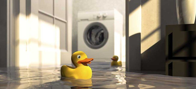 Tips for Finding Water Damage in Your Home
