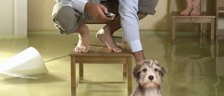 how to cleanup a basement flood indianapolis