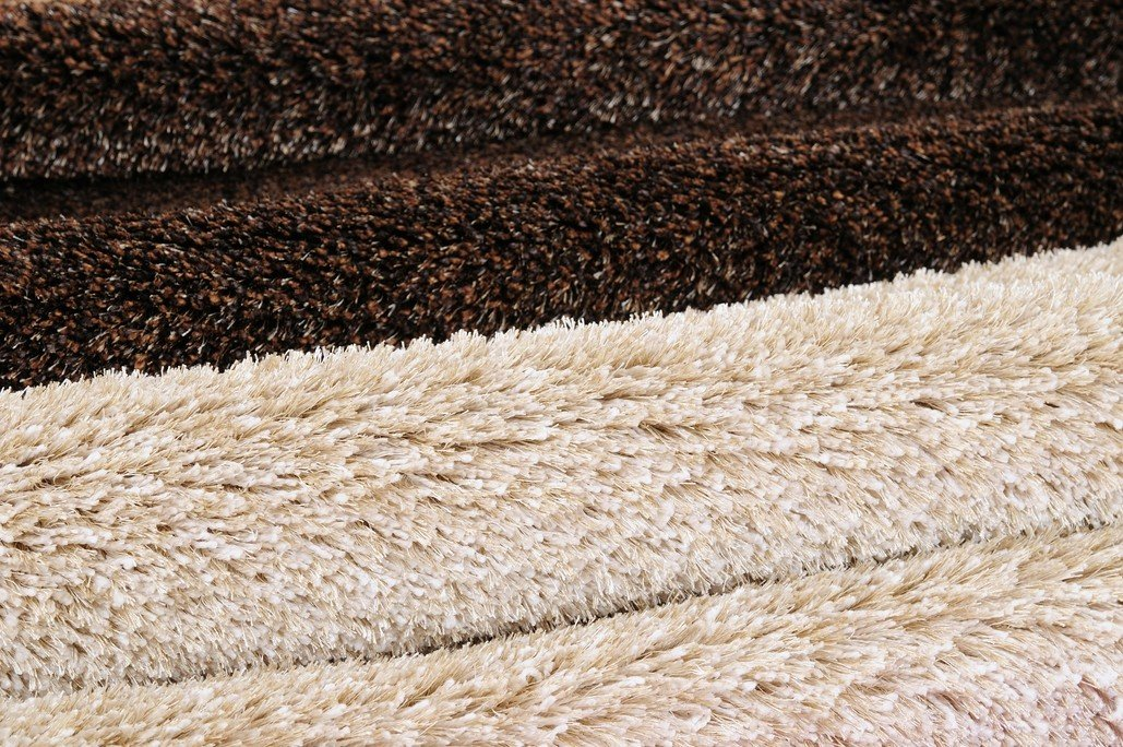 Dry wet carpet in Indianapolis, Noblesville, and Carmel
